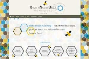 Beyond Social Buzz